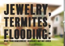 Jewelry, Termites, Flooding_ What Your Homeowners' Insurance M